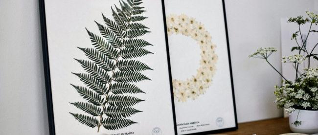 boutique ephemere herbarium scaled