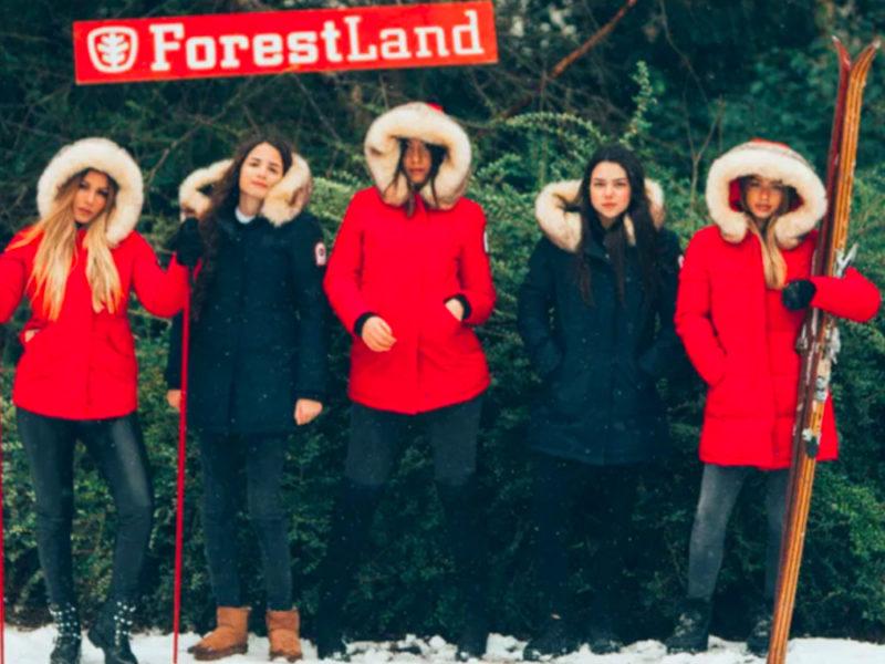boutique forestland